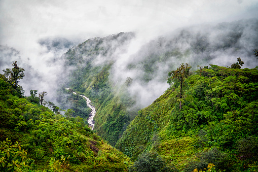 Central America「Tranquil scene of river valley in clouds」:スマホ壁紙(16)