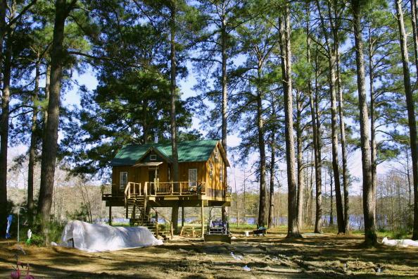 Bedroom「Architect Sets High Standard In Tree House」:写真・画像(6)[壁紙.com]
