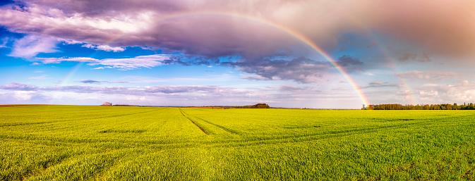East Lothian「UK, Scotland, East Lothian, rainbow over field」:スマホ壁紙(15)