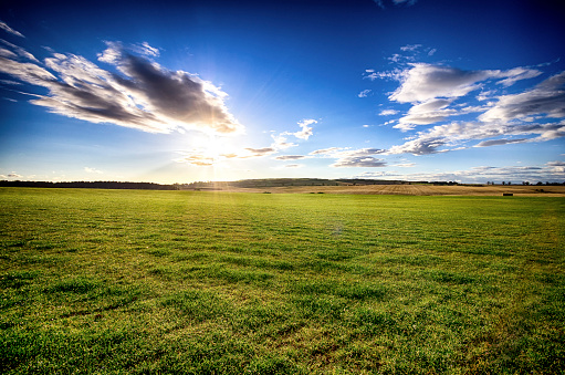 太陽「UK, Scotland, East Lothian, field at sunset」:スマホ壁紙(6)