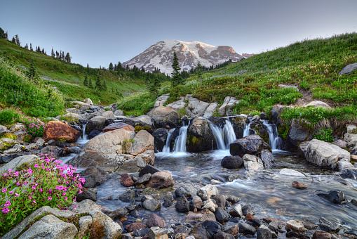 Cascade Range「Mount Rainier Summer」:スマホ壁紙(19)