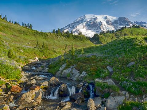 レーニア山国立公園「Mount Rainier and Edith Creek, Mount Rainier National Park, Washington State, USA」:スマホ壁紙(15)