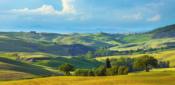 Hill「Landscape in Tuscany in the spring」:スマホ壁紙(10)