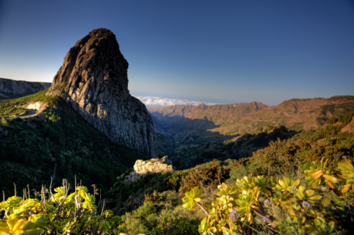UNESCO「Landscape in Garajonay National Park, La Gomera」:スマホ壁紙(17)