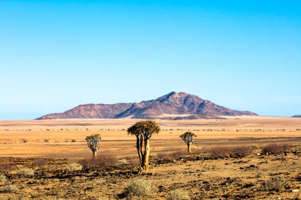 Landscape in Namibia:スマホ壁紙(壁紙.com)
