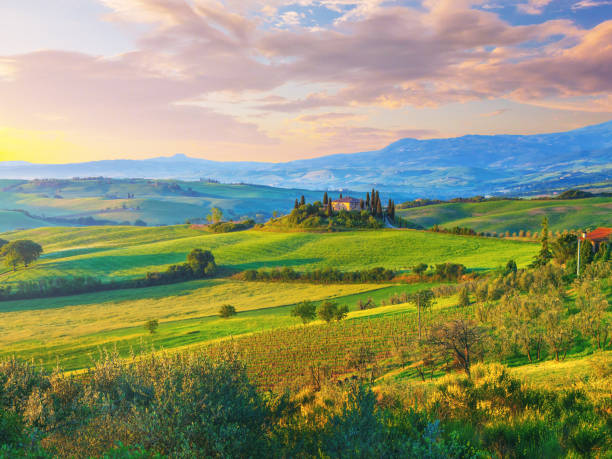Landscape in Tuscany:スマホ壁紙(壁紙.com)