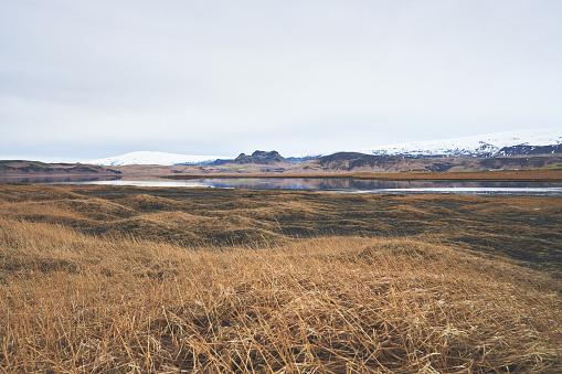 Dyrholaey「landscape in Iceland」:スマホ壁紙(18)