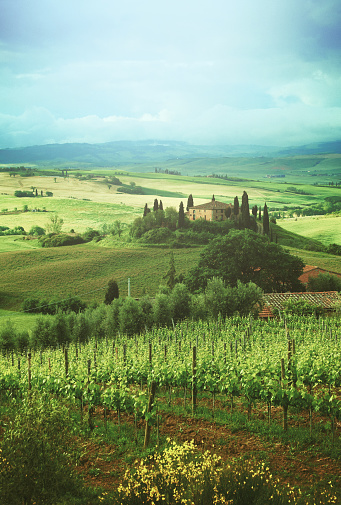 Val d'Orcia「Landscape in Tuscany, Italy」:スマホ壁紙(14)