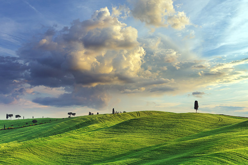 Val d'Orcia「Landscape in Tuscany, Italy」:スマホ壁紙(5)
