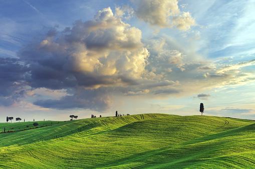 Dawn「Landscape in Tuscany, Italy」:スマホ壁紙(0)