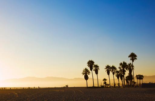 Beach「Landscape image of Venice Beach, California at sunset 」:スマホ壁紙(3)