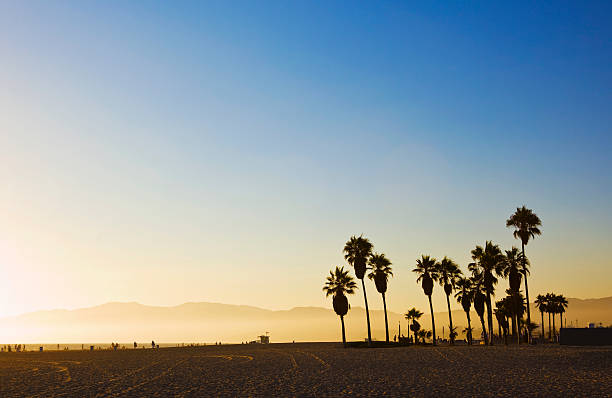 Landscape image of Venice Beach, California at sunset :スマホ壁紙(壁紙.com)