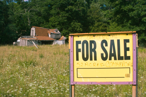 Real Estate Sign「House and land for sale」:スマホ壁紙(17)