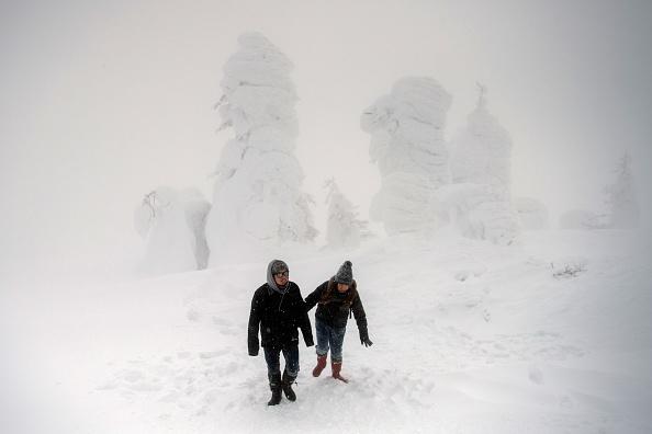 ヒューマンインタレスト「The Snow Monsters Of Mount Zao」:写真・画像(17)[壁紙.com]