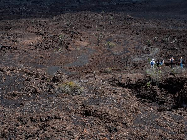 世界遺産「Nature and Human Lives Seek Equilibrium In Galapagos」:写真・画像(11)[壁紙.com]