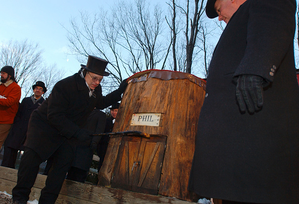 Temptation「Punxsutawney Phil Emerges For Groundhog Day」:写真・画像(14)[壁紙.com]