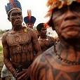Amazon Rainforest壁紙の画像(壁紙.com)