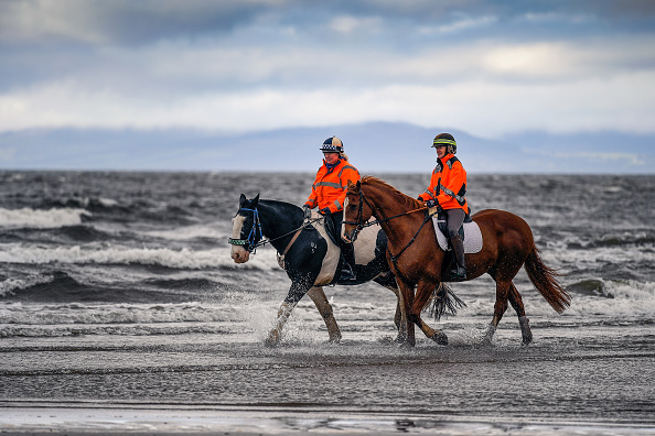 Horse「UK Hit By Storm Helene」:写真・画像(15)[壁紙.com]