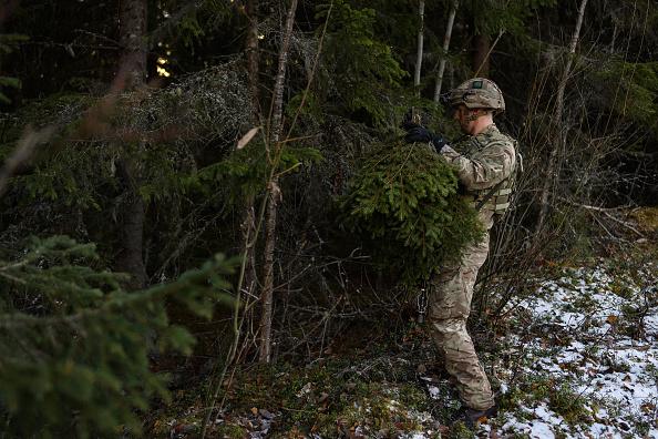 マツ科「NATO Exercise 'Trident Juncture' Begins in Norway」:写真・画像(7)[壁紙.com]