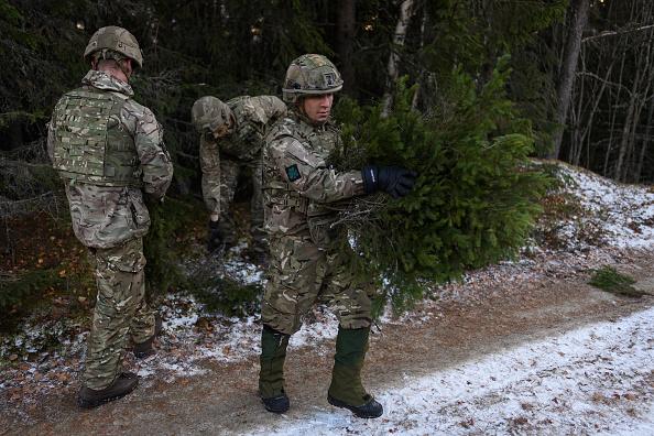 マツ科「NATO Exercise 'Trident Juncture' Begins in Norway」:写真・画像(8)[壁紙.com]