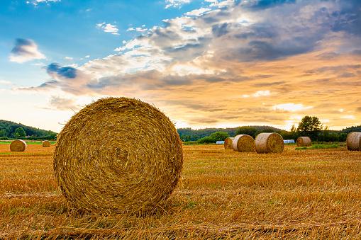 Crop - Plant「Hay bale sunset」:スマホ壁紙(4)