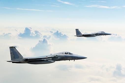 Fighter「F-15 Eagles in Flight」:スマホ壁紙(18)
