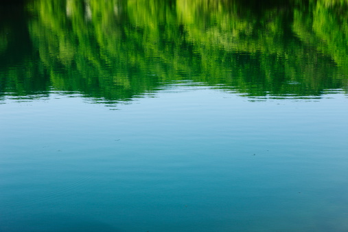 Water Surface「Surface of the lake in forest」:スマホ壁紙(6)