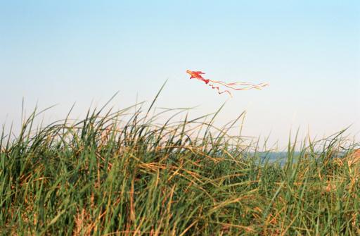 kite flying「Kite flying over sand dunes」:スマホ壁紙(12)