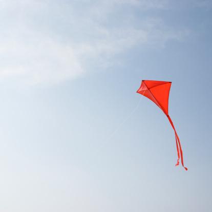 kite flying「Kite flying in air」:スマホ壁紙(6)