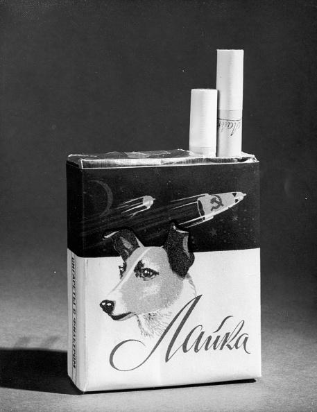 Empty「Sputnik Cigarettes」:写真・画像(3)[壁紙.com]