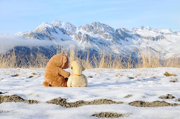 two bears romantic in the mountains:スマホ壁紙(壁紙.com)