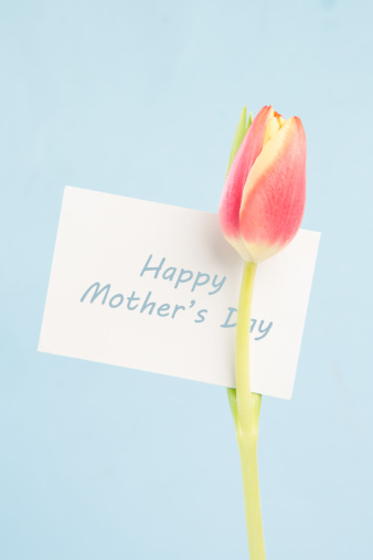 母の日「A beautiful tulip with a happy mothers day in blue card」:スマホ壁紙(17)