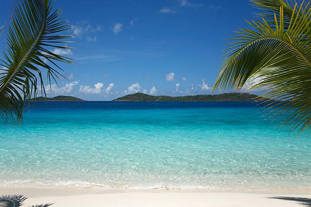 beautiful tropical scene at a  beach in the Caribbean:スマホ壁紙(壁紙.com)