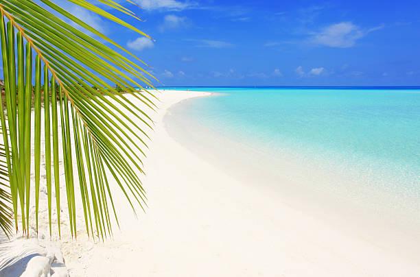 心洗われるビーチのまとめ:2010年11月11日(壁紙.com)