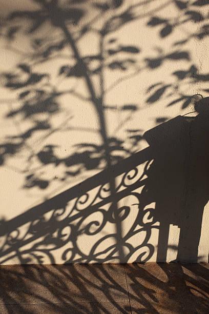 Beautiful Tree Shadows on Wall:スマホ壁紙(壁紙.com)