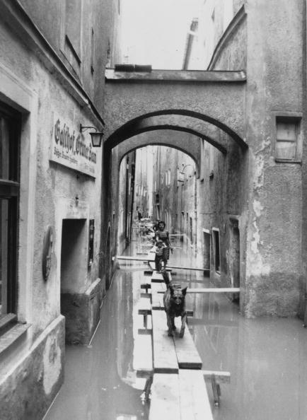 Carefree「Flood Walkway」:写真・画像(19)[壁紙.com]