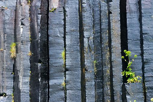 Basalt「Basalt columns surrounding Svartifoss Waterfall, Skaftafell National Park, Vatnajokull, Iceland」:スマホ壁紙(18)