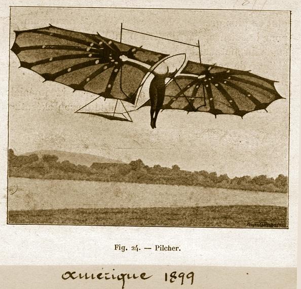 Finance and Economy「Bat Glider」:写真・画像(11)[壁紙.com]