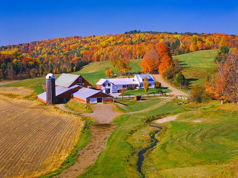 Sugar maple「Beautiful autumn view of a farmhouse in Vermont」:スマホ壁紙(8)