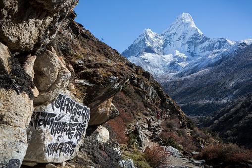 Ama Dablam「Stone carvings seen on rock alongside trail to Everest Base Camp, Khumbu, Nepal」:スマホ壁紙(10)