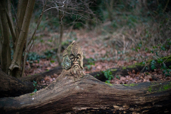 ベストオブ「Views Of Moseley Bog Where JRR Tolkien Played As A Child」:写真・画像(3)[壁紙.com]