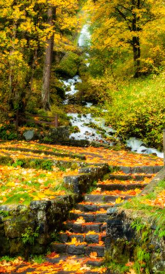 画像加工フィルタ「Wah-Kee-Na Falls, Columbia River Gorge」:スマホ壁紙(19)