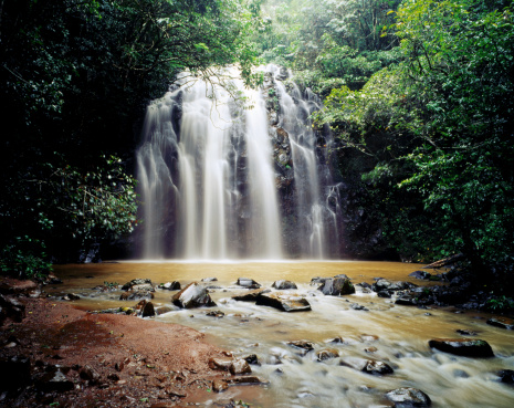 Waterfall「Ellinja Falls on Atherton Tablelands.」:スマホ壁紙(17)