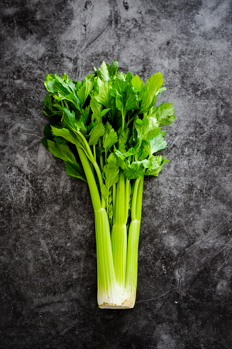 Celery「Celeriac」:スマホ壁紙(18)