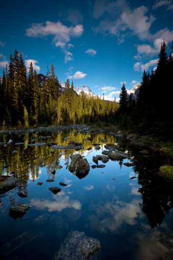 Lake O'Hara「Calm pond in the Rocky Mountains」:スマホ壁紙(4)