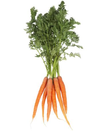 Carrot「Group Of Carrots」:スマホ壁紙(7)