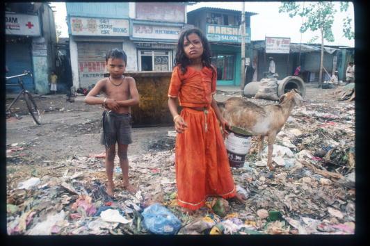 トピックス「Overpopulation In India」:写真・画像(16)[壁紙.com]