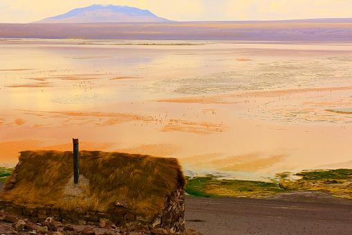 Bolivian Andes「Impressive Laguna colorada - Red lake reflection, Andean Flamingos birds and Idyllic Altiplano Atacama Desert, Volcanic landscape panorama – Potosi region, Bolivian Andes, Bolívia」:スマホ壁紙(6)