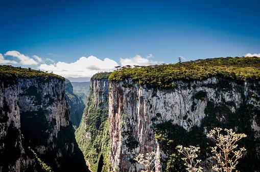 Plateau「Serra Geral (Cânion do Itaimbezinho)」:スマホ壁紙(14)