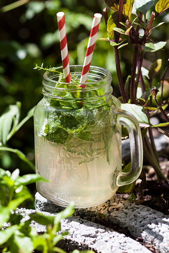 Drinking Straw「Homemade lemonade with a variety of herbs」:スマホ壁紙(12)